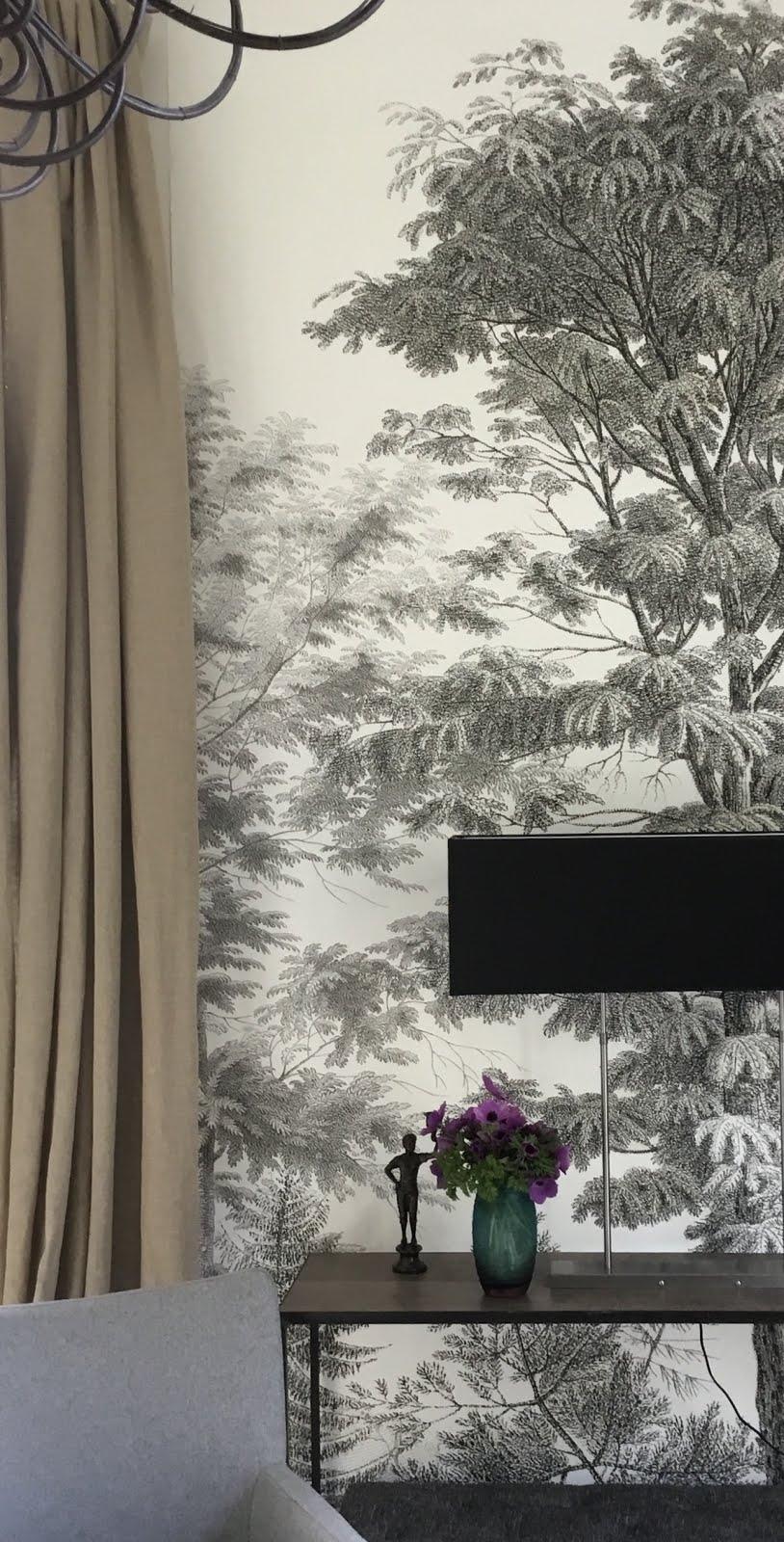 Les Acacias grisaille