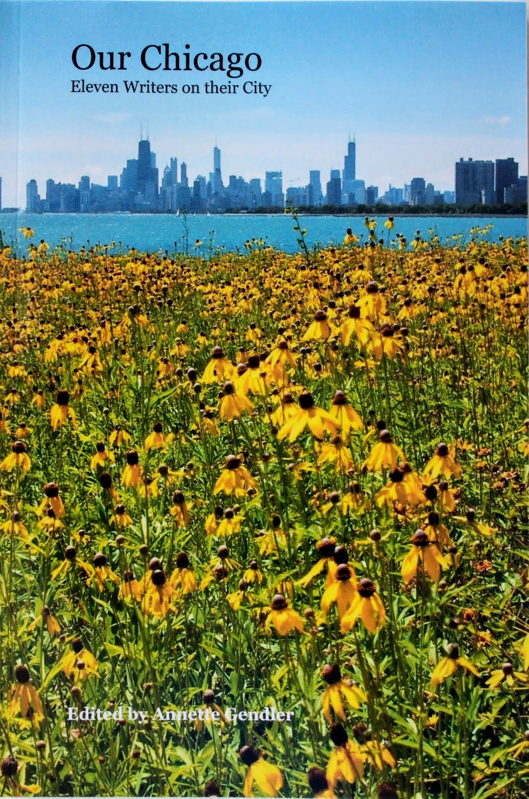 Gorgeous photography and short essays on Chicago - great gift for Chicago lovers and visitors!