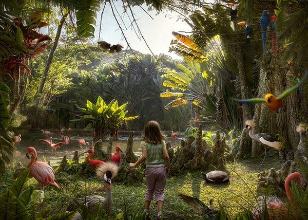 Historias Naturais: Photos by Marcelo Tinoco
