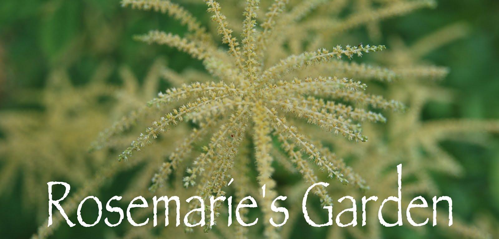 Rosemarie's Garden