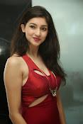 Tanvi Vyas latest glam pics-thumbnail-8
