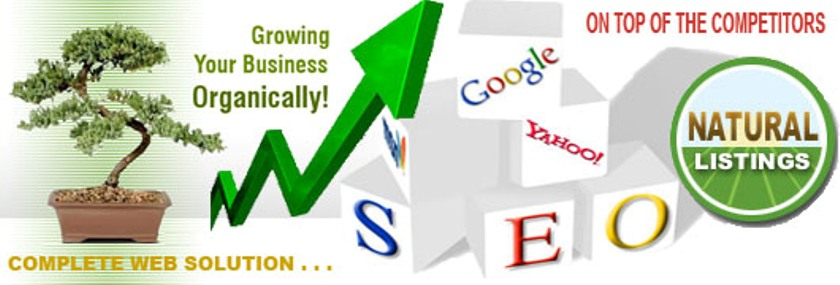 Seo Services And Information