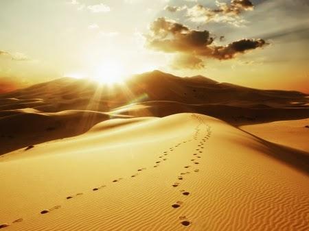 Matahari di padang pasir