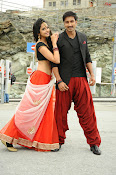 Loukyam Movie photos gallery-thumbnail-6