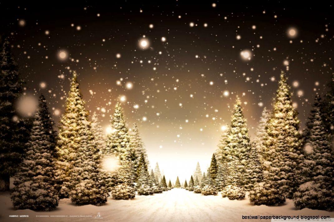 Christmas Forest HD desktop wallpaper  Widescreen  High