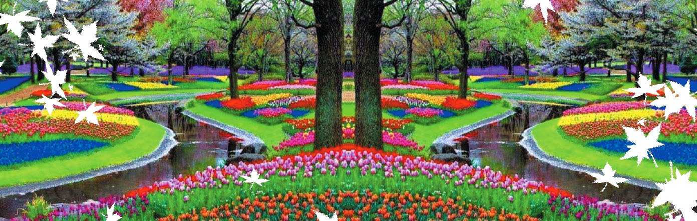 The fairy tale Keukenhof Park in Holland