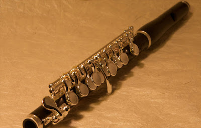Flute classes in nagpur