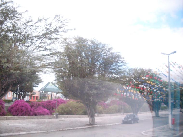 Praça das Flores/Gravatar/ Penambuco