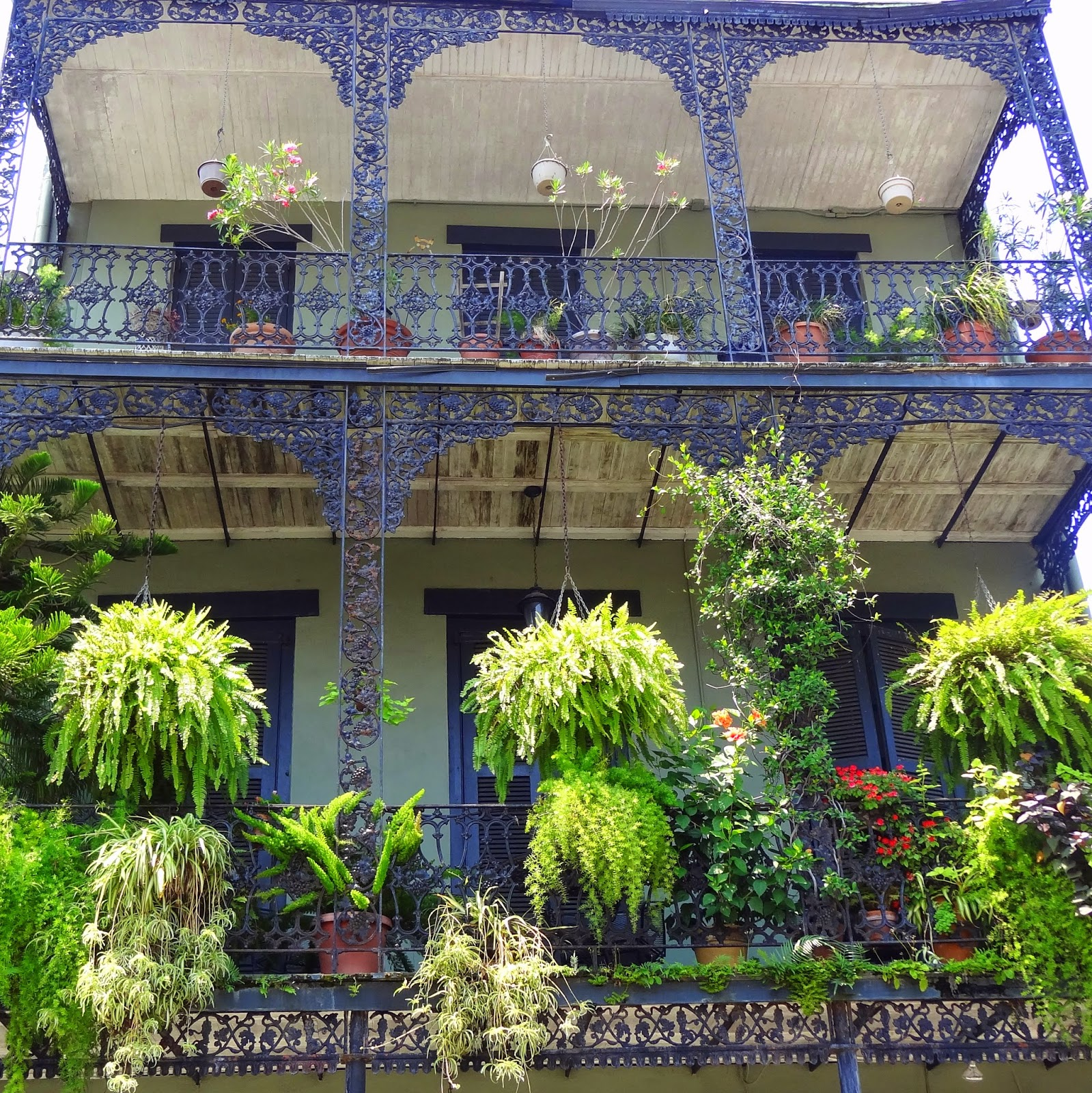 New-Orleans-Balcony-With-Ferns