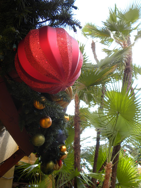 Christmas at Bush Gardens