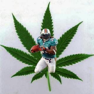 NFL e política de maconha