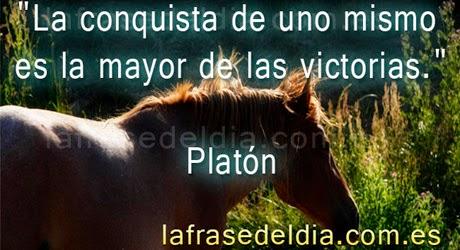 citas motivadoras de Platón