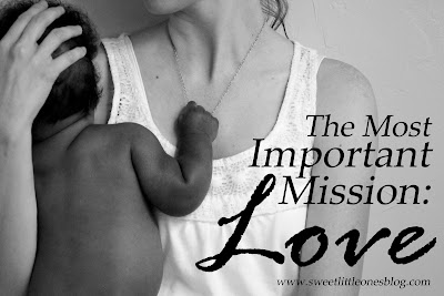 http://www.sweetlittleonesblog.com/2015/11/the-most-important-mission-love.html