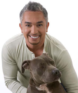 Dog Separation Anxiety Treatment ala Cesar Millan