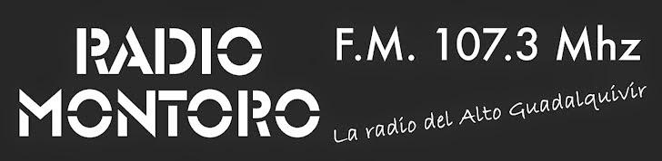 PARE OIR LA RADIO BIEN UTILIZA VAVEGAROE EXPLORER