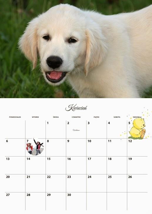 foto kalendarz - planer