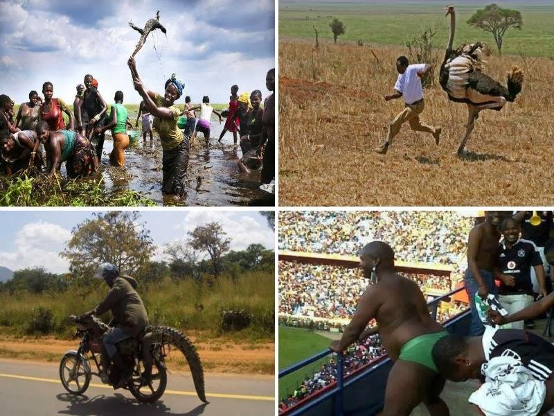 http://www.guerrilhanerd.com/2014/01/enquanto-isso-no-continente-africano-42.html