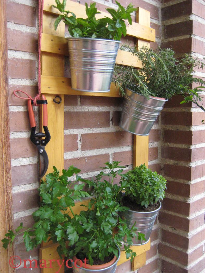 Marycot el jard n de las delicias for El jardin de las delicias benavente