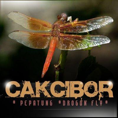cAkcIboR !!