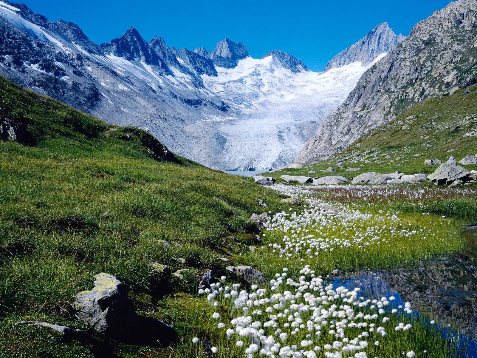 http://3.bp.blogspot.com/-REa-_jKwUu8/T5cAYIaRNSI/AAAAAAAADds/evgR4M-P2_0/s1600/HD+Mountain+Spring+Wallpapers.jpg
