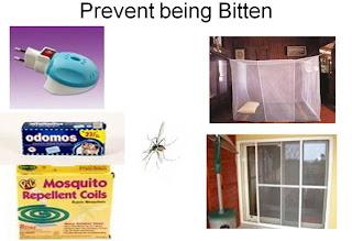teknik pencegahan chikungunya
