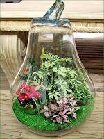 Oficina publica saludable jardines en miniatura para tu for Piedrecillas para jardin