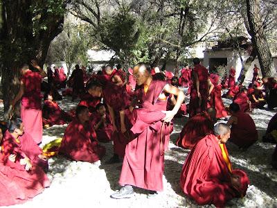 Монастырь Сера Мэй. Дебаты монахов.