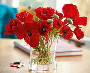poppies vase accessories table