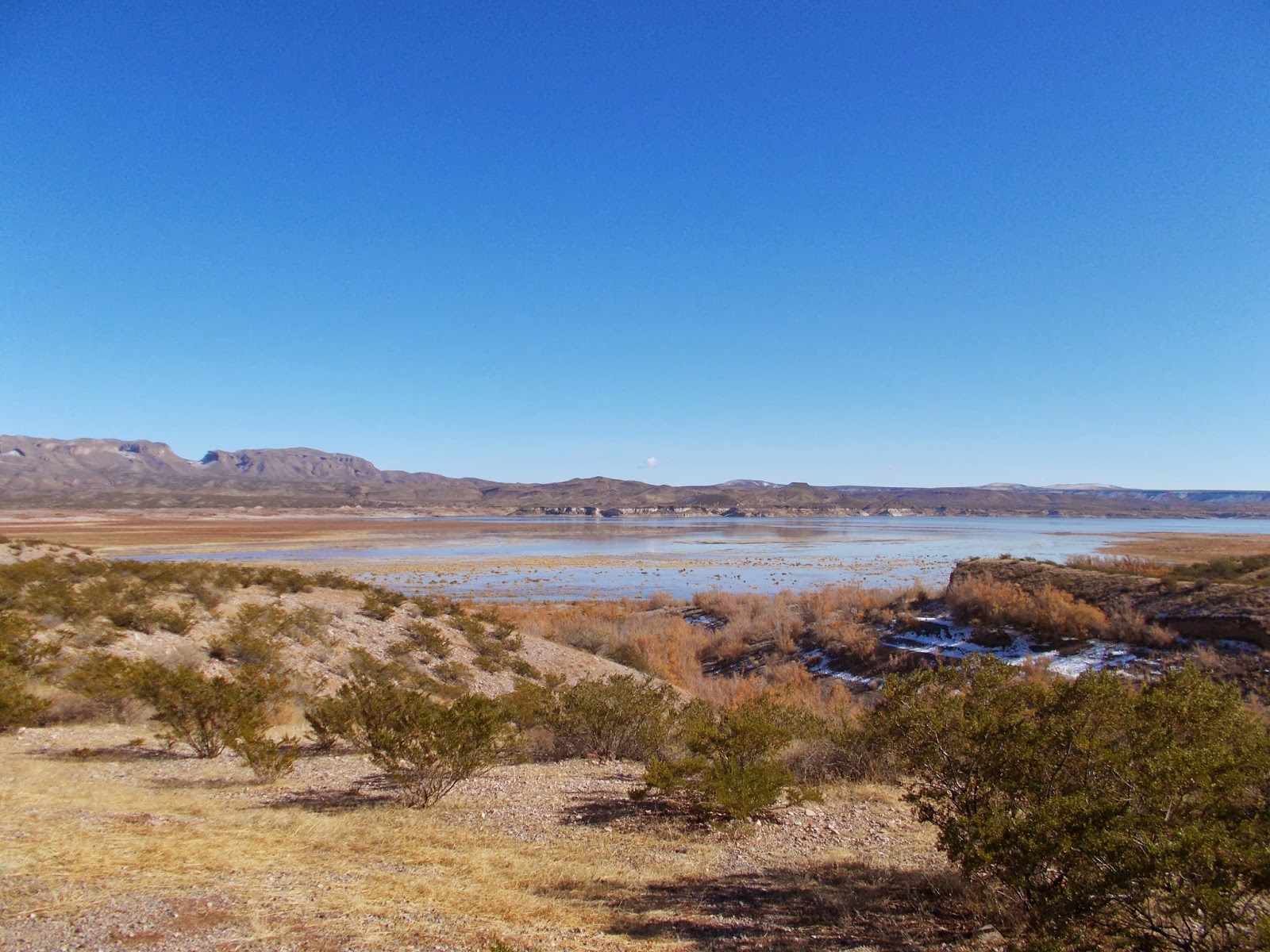 elephant butte big and beautiful singles Today's and tonight's elephant butte, nm weather forecast, weather conditions and doppler radar from the weather channel and weathercom.