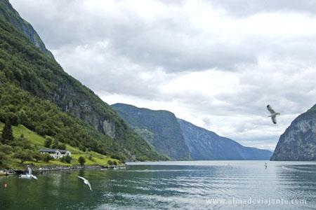 fiordes-noruega,mount, Mountains, Lake, sunset, Noruega photograph