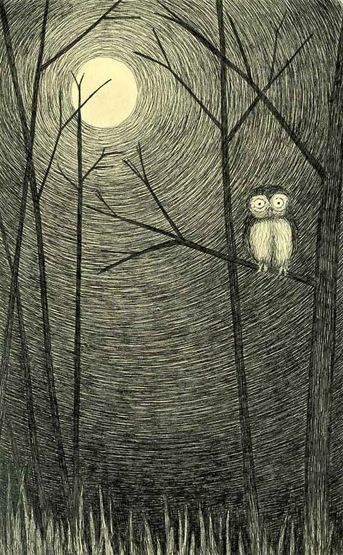 night owl - yara dutra