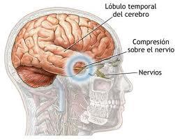 Informatii medicale despre herniile cerebrale