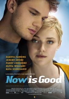 Agora é Para Sempre (Now Is Good) (2012) DVDRip Dual Áudio Torrent