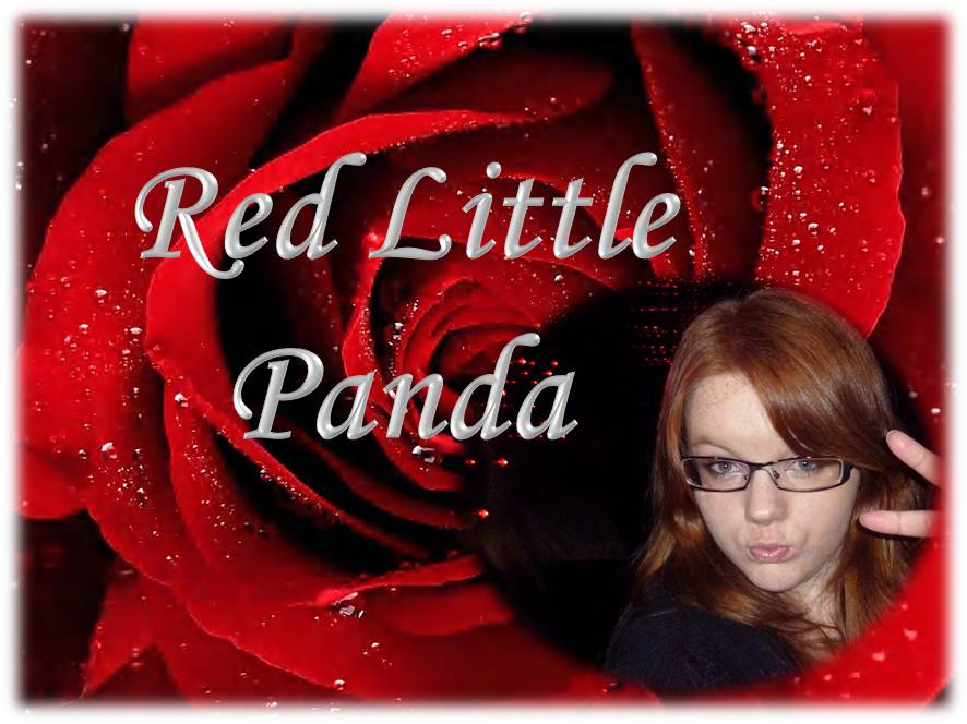Red Little Panda