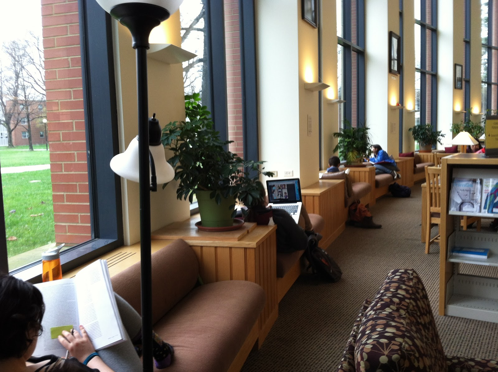 Photograph showing window seats along the curved north interior wall of the Science Library.  Each window seat is occupied by a student; reading, using a laptop or looking out the window.