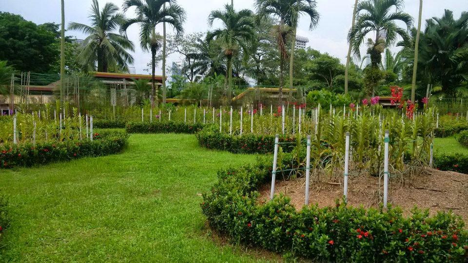The Orchid and the Hibiscus Gardens, Kuala Lumpur, tourism, travel, Taman Bunga Raya, Taman Bunga Orkid.