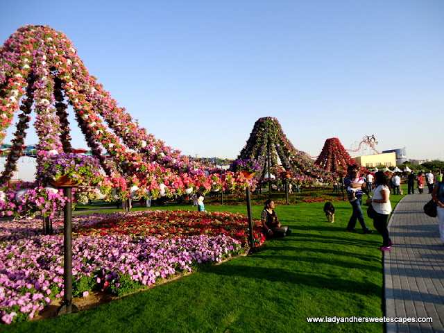 creative landscapes at Miracle Garden