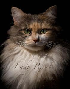 Lady Bjork
