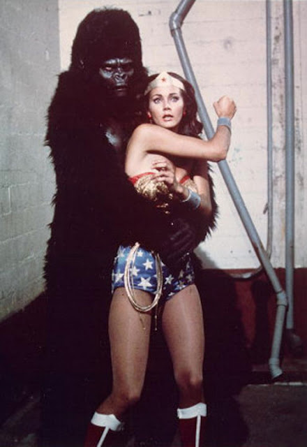 Gorillas vs girl sex
