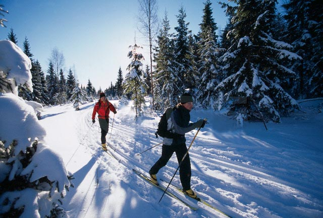 cross country snow skiing 