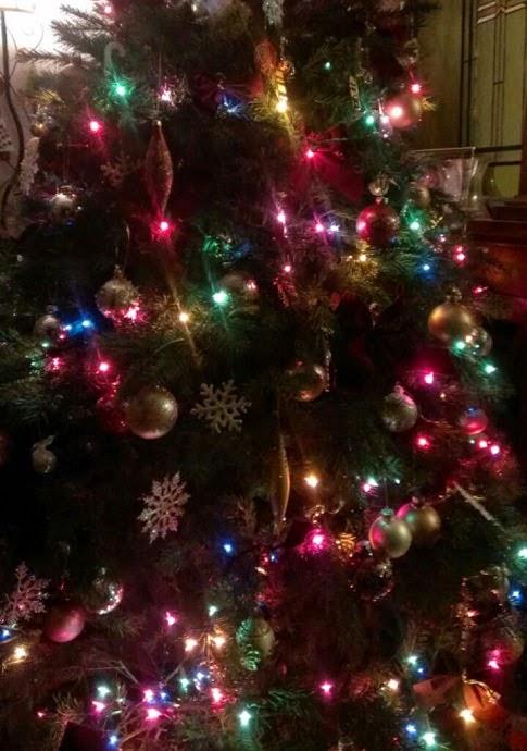christmas tree 2014 4
