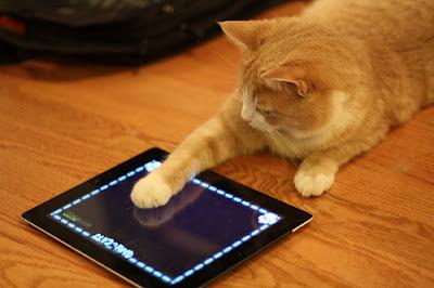 kucing bermain iPad