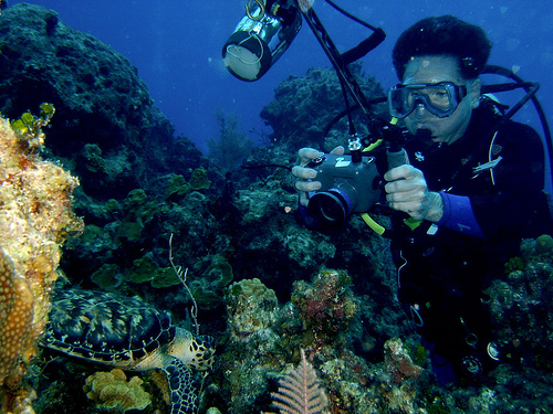 Photographer Training Class: Underwater Photographer Job
