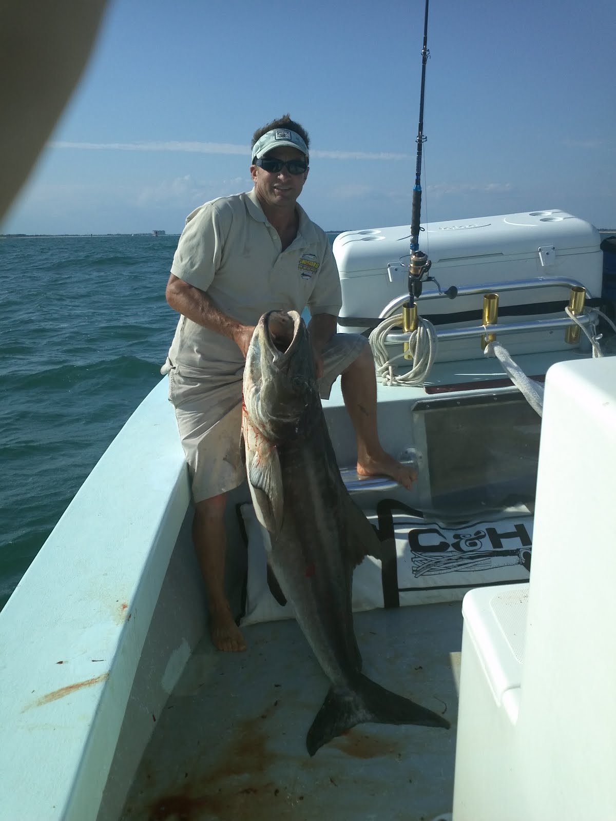emerald isle fishing report cobia fishing out of emerald ForFishing Report Emerald Isle Nc
