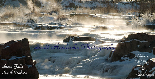 Scott Hendricks Photography