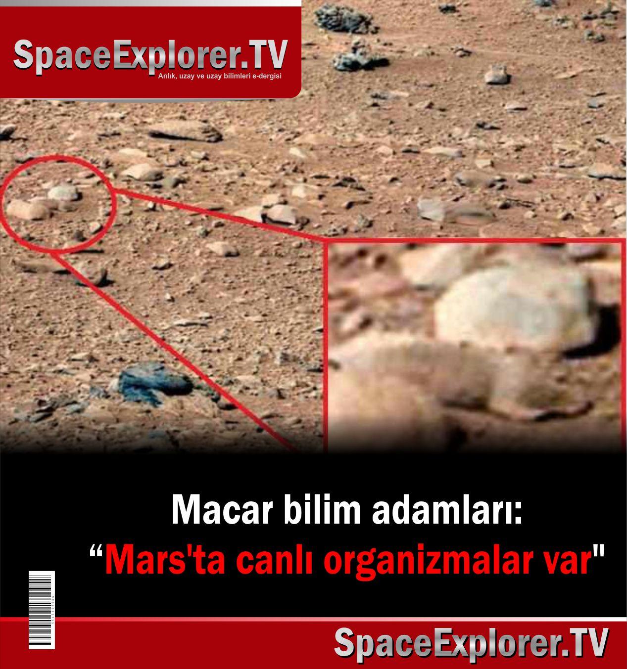 Mars Global Surveyor, Mars, Uzayda hayat var mı?, Mars'ta yaşam var mı, NASA, ABD, Mars'taki delikler,