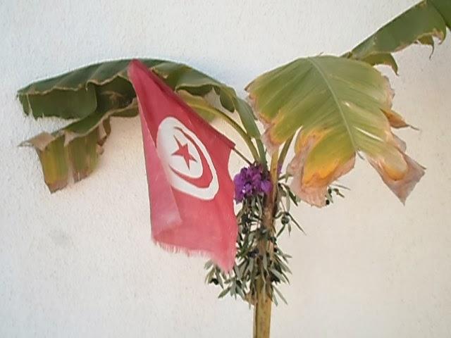 UPPRORET I TUNISIEN med Jenny Bond direkt