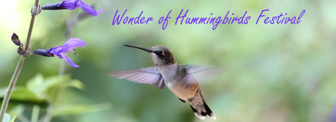 Wonder of Hummingbirds Festival