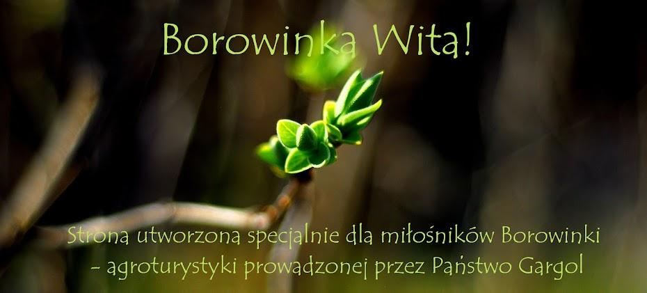 Borowinka Wita. Agroturystyka Roztocze. Noclegi Roztocze.