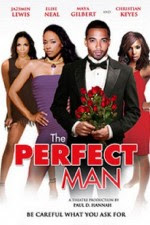 The Perfect Man 2011 Hollywood Movie Watch Online